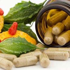Cassia Tora L in Nutraceuticals