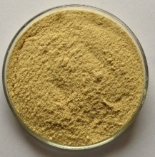 Cassia Gum Powder (Cassia Tora Powder) - 1