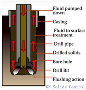 consideration-of-sesbania-for-fluid-drill