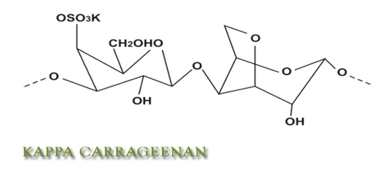 kappa-carrageenan-in-dairy-products