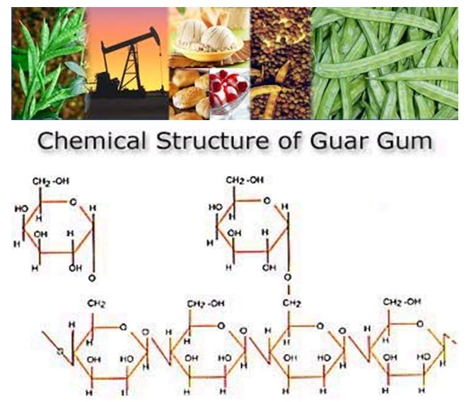 Commercial Guar Gum and its Chemical Properties
