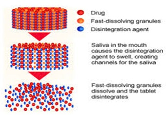 Processing Seeds for Pharmaceutical Purpose