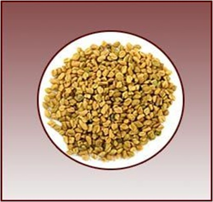 Biological Ingredients comprised in Fenugreek Gum Powder