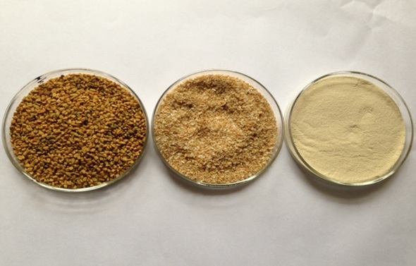 Fenugreek seeds & Fenugreek Powder