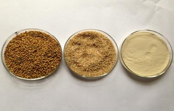 Fenugreek seeds & Fenugreek Powder