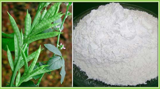 guar gum powder from india