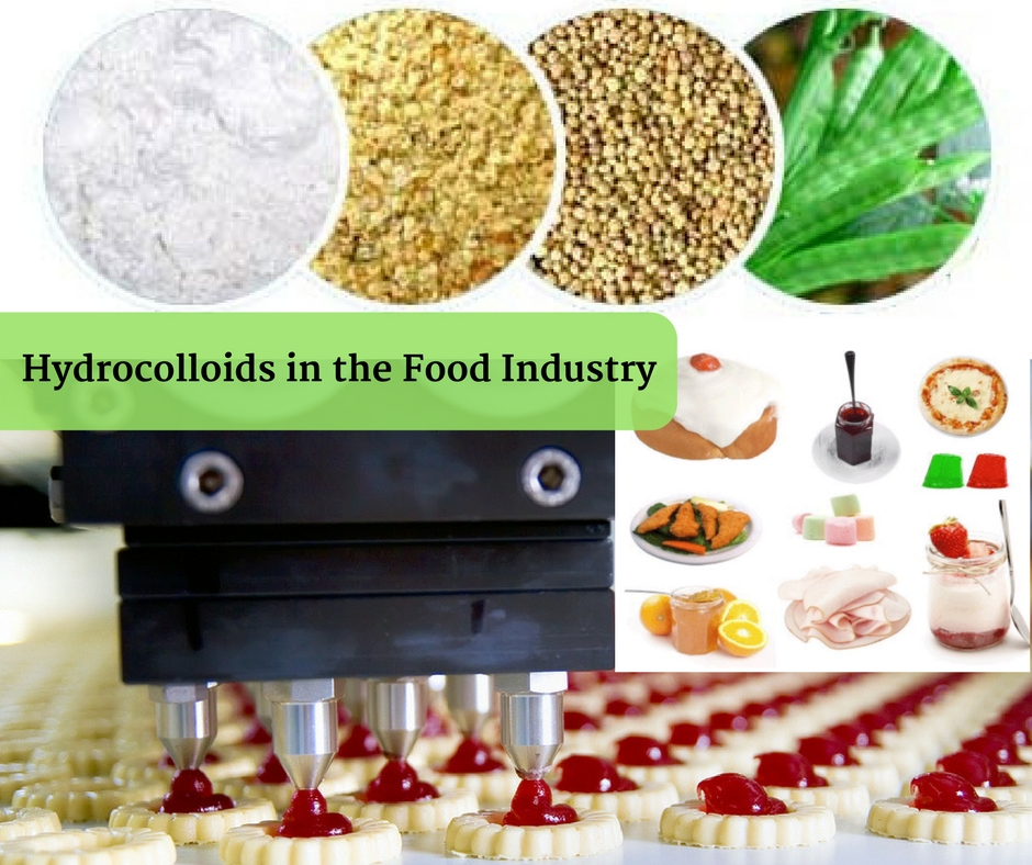 Hydrocolloids in the Food Industry