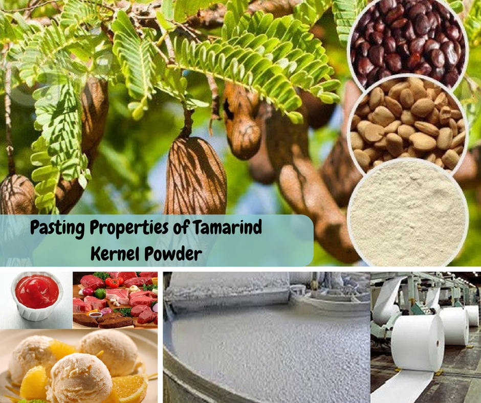 Properties of Tamarind Kernel Powder