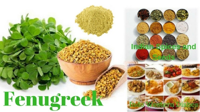 fenugreek gum powder and fenugreek seeds