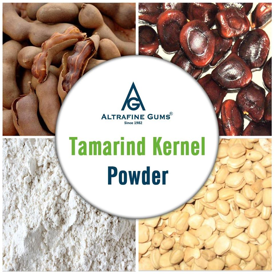 Scope of Tamarind Kernel Powder Across Industries