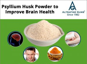 Psyllium Husk Powder to Improve Brain Health