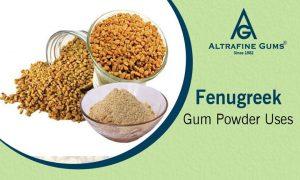 Nutrients composition of Fenugreek seeds